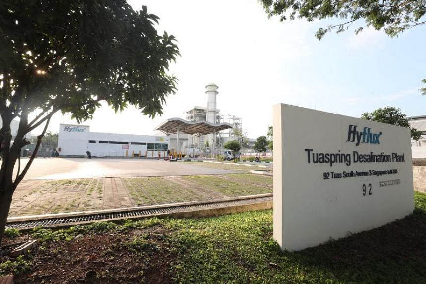 Hyflux, in a Singapore Exchange announcement, said the investor is one of the top 10 largest desalination companies globally.