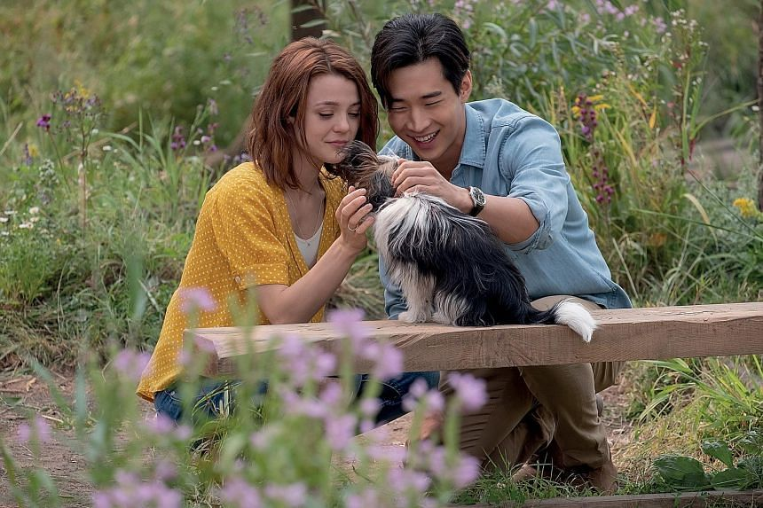 Canadian actor Henry Lau and Kathryn Prescott (both left) play two good friends who bond with a special canine in A Dog's Journey.
