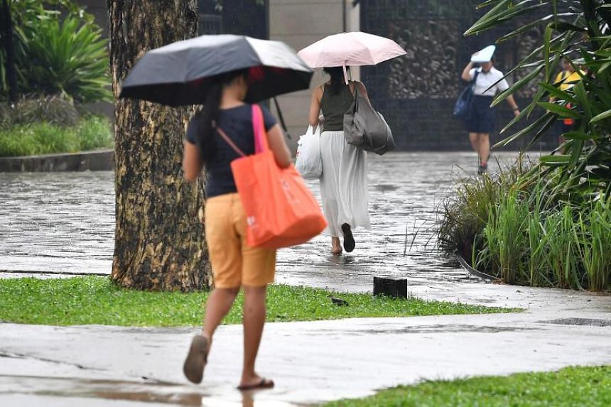 Short thundery showers are expected mostly between the late morning and early afternoon on six to eight days during the next two weeks.