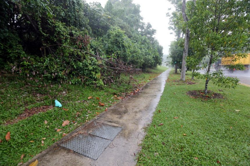 The victim was dragged into a nearby forested area between the Singapore Turf Club and Kranji War Memorial, where she was raped.