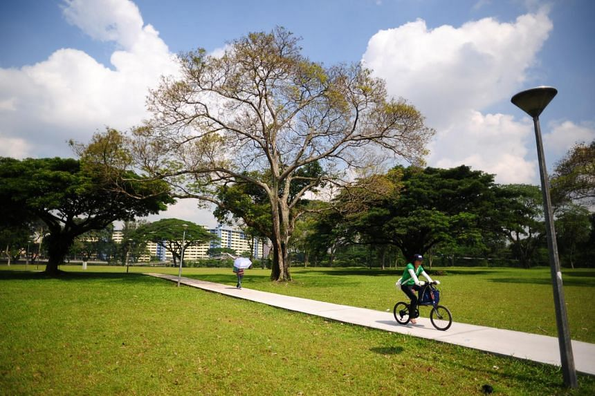 A woman riding a bicycle in St Michael's estate.