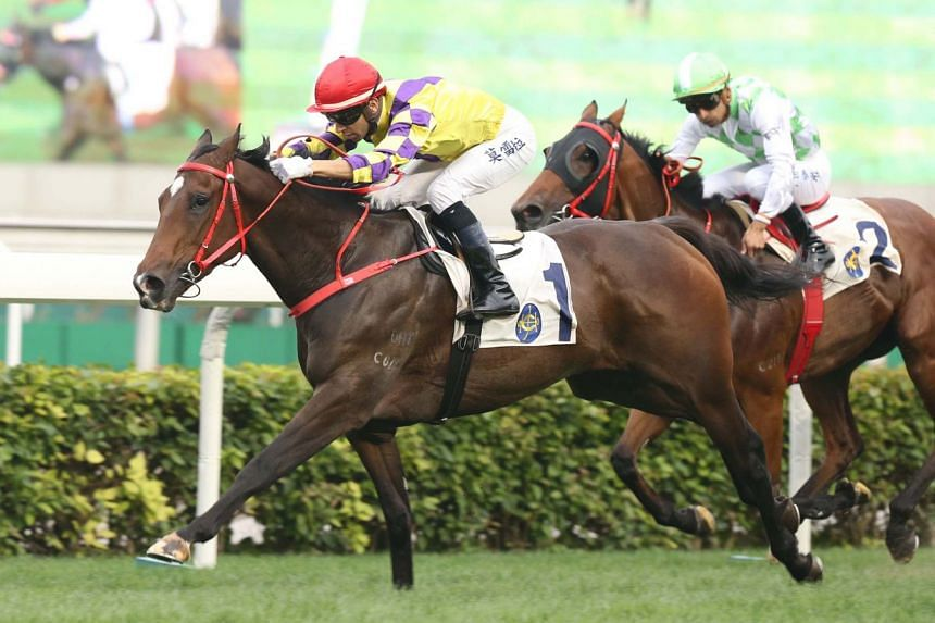 Champion's Way (No. 1), who is unbeaten in five starts, has given every indication that the mile will suit him.