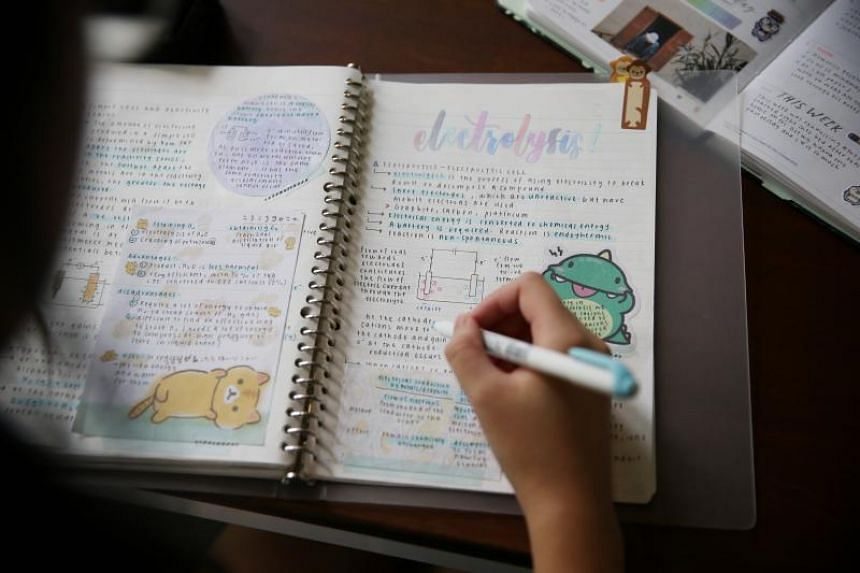 """Study accounts, or """"studygrams"""", are inspirational accounts on Instagram filled with well-designed and colourful revision notes, which typically combine elements of calligraphy and hand letterings, and are decorated with cute stickers."""