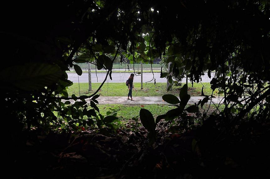 The footpath along Turf Club Avenue is seldom used as there are no bus stops there, residents say. The alleged rape happened in the area at around 1.30am on May 4.