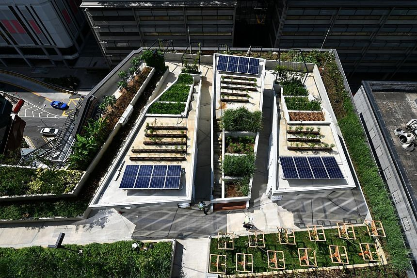 The 18,000 sq ft Food Garden on level 7 as viewed from the Roof Garden on level 10 of the new Funan.