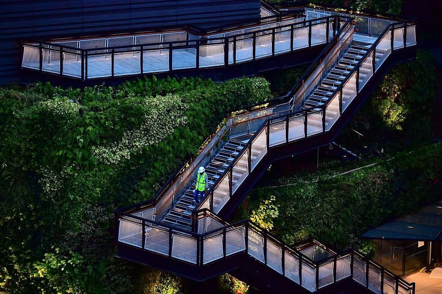 Stairs leading up to the Food Garden, where shoppers at the new Funan mall can experience a variety of edible plants through smell, touch and sight. Deck chairs at the rooftop garden, which offers visitors a view of Marina Bay and Fort Canning from e