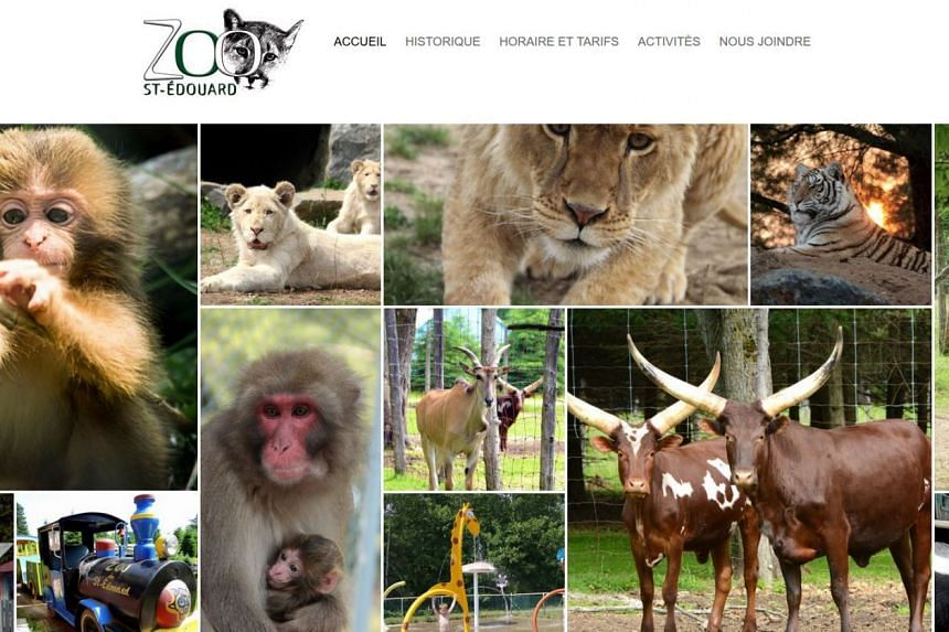 Canada shuts down zoo, charges owner with cruelty, Americas