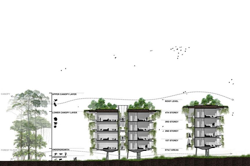 A cross section illustration of the resort.
