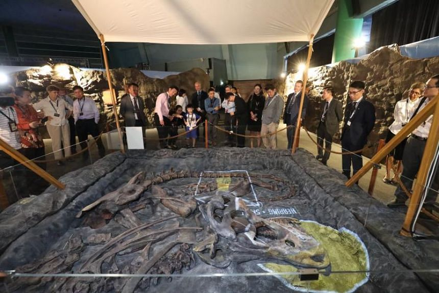 The Science Centre's latest exhibition on polar dinosaurs, called DinoQuest, was officially opened yesterday and will be open to the public from June 1 to August 31. The new Science Centre will house more purpose-built gallery spaces for thematic exh