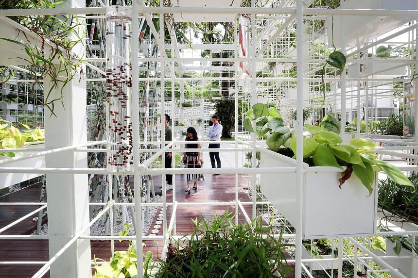 The Seed Conservatory, featuring the historical flora of Singapore, is one of eight interactive pavilions and installations along the Pathfinder, an outdoor exploratory trail. Deputy Prime Minister Heng Swee Keat and Manpower Minister Josephine Teo v