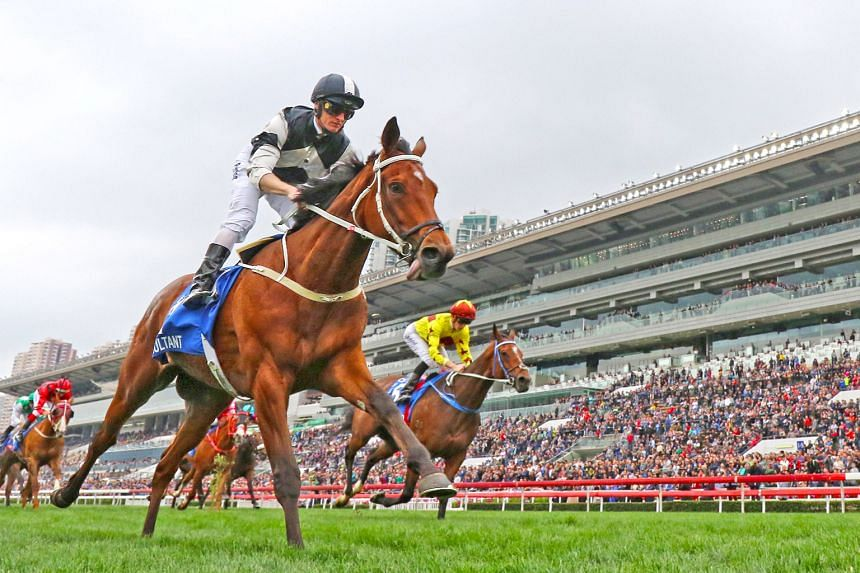 Exultant is already proven over 2,400m and can score his third Group 1 win this campaign in tomorrow's Champions & Chater Cup.