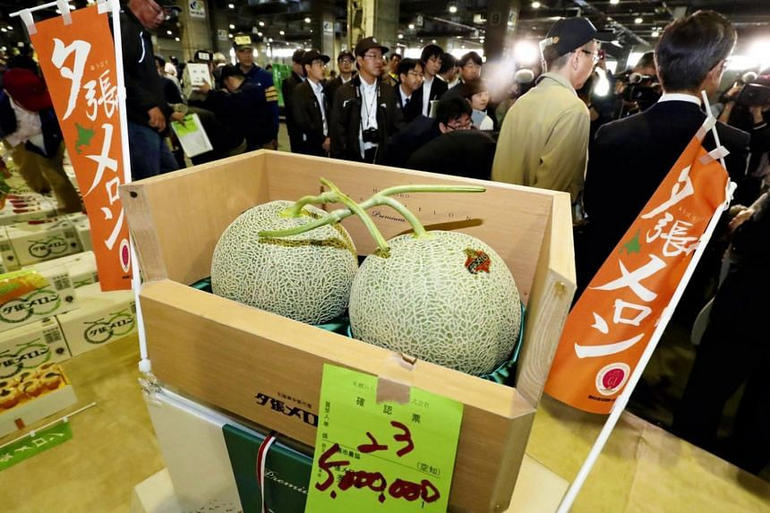 Two Yubari melons fetched a record-high price of 5 million yen (about $45,600) at the first auction of the year for the fruit at the Sapporo Central Wholesale Market in Sapporo, Japan, breaking the previous record of 3.2 million yen.