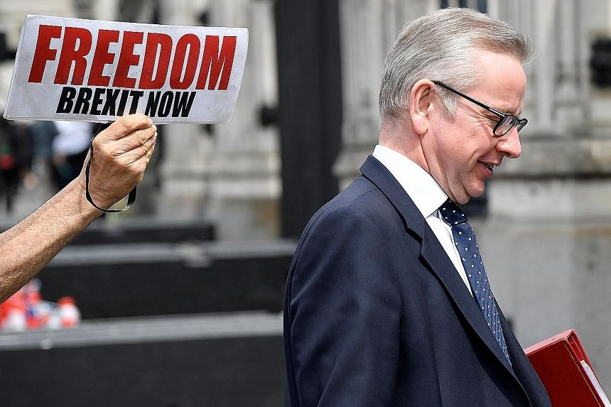 Environment Secretary Michael Gove walking past a pro-Brexit protester holding a placard outside Parliament in London last week. Mr Gove joins a pool of seven other prime ministerial hopefuls, including one-time ally Boris Johnson, with competing vis