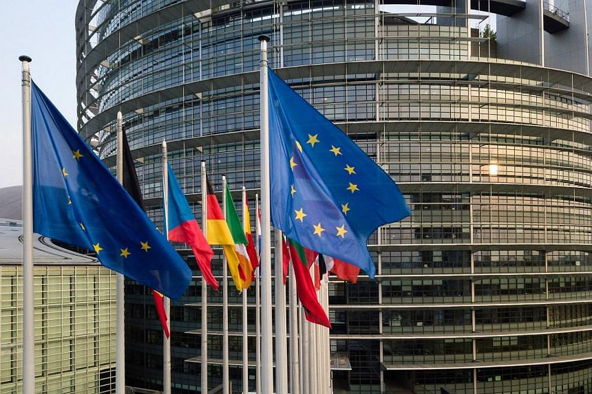 Flags of the European Union and its member states near the building of the European Parliament in Strasbourg, eastern France, on April 14, 2019.