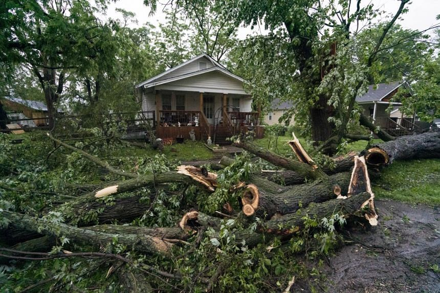 A tornado toppled trees and power lines in much of the city of Linwood, Kansas on May 28, 2019.
