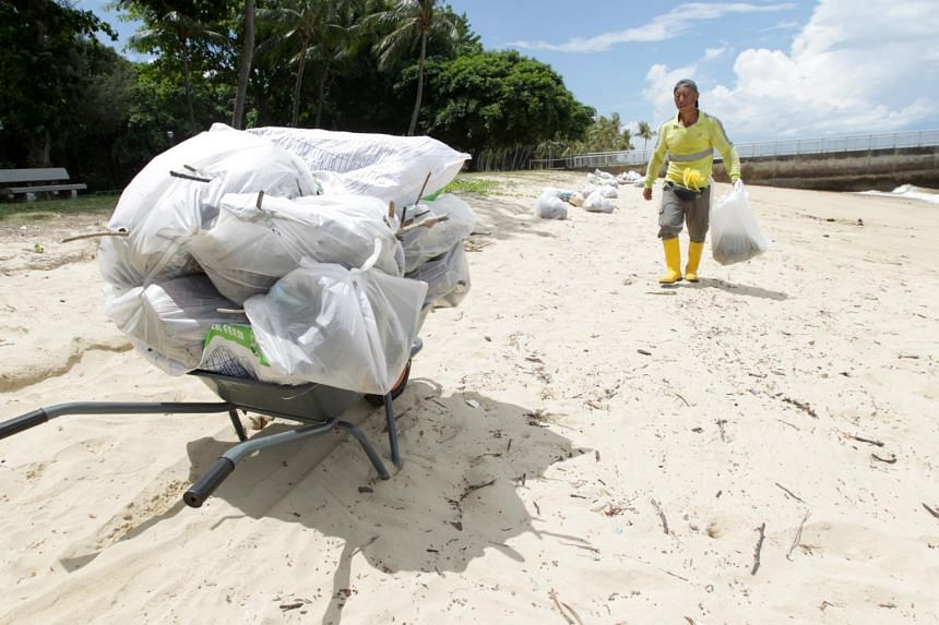 A worker clearing the trash from the beach in East Coast Park.