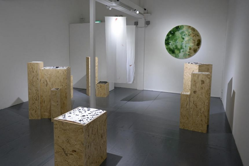 The tree is the leaf is the land by Woong Soak Teng and Ernest Wu.