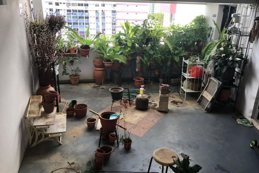The corridor at Block 101 Pasir Ris Street 12 after more than 30 potted plants were removed.