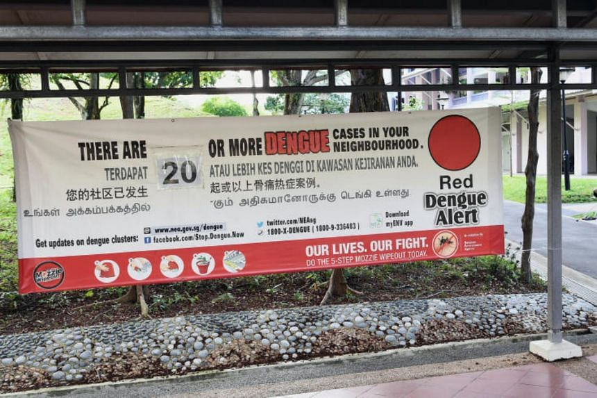 The latest death comes in the wake of Singapore's increasingly worsening dengue situation, marked by nine consecutive weeks of rising infections.