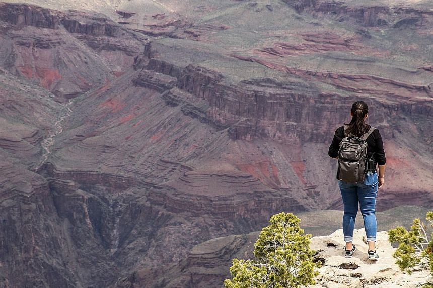 A hiker at the edge of the Grand Canyon cliffs last month. The park has experienced a surge in fatal accidents, with at least four visitors dying in as many weeks in March and April. PHOTO: AGENCE FRANCE-PRESSE