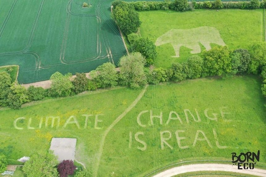"Ollie Nancarrow spent the weekend mowing ""climate change is real"" and a massive polar bear into the lawn of his family home near Hatfield Heath in Essex."