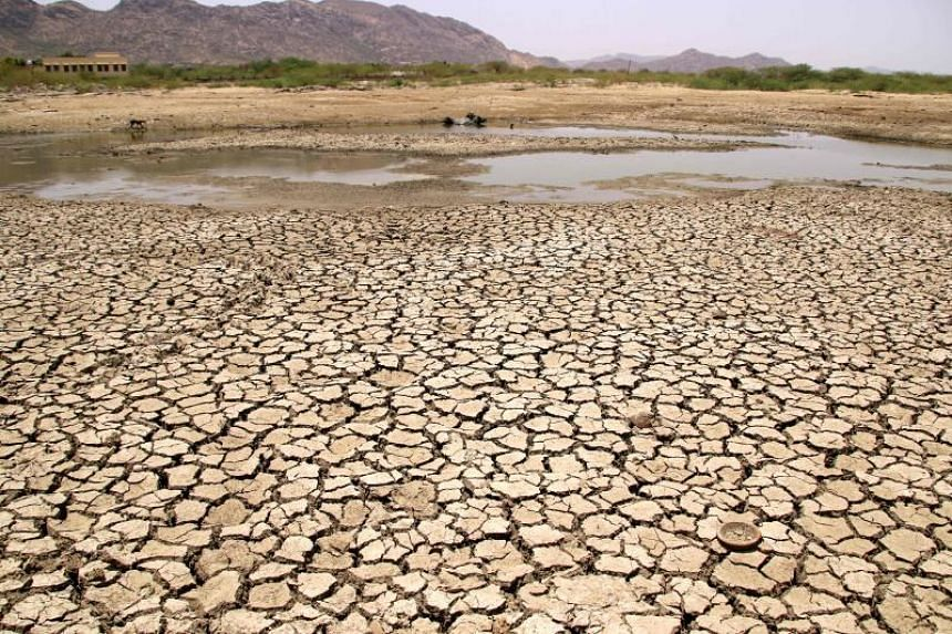 A general view of a lake running dry on a hot summer day near Ajmer on June 2, 2019.