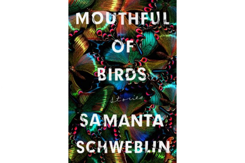 Mouthful Of Birds, which was published in Spanish nine years ago, has been deftly translated by Megan McDowell, who also translated author Samanta Schwebin's short novel, Fever Dream.