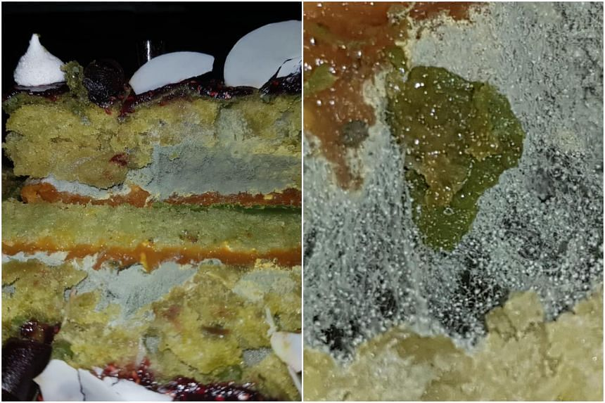 Photos posted to Facebook show a cross section of the cake from the Holland Village Taste outlet with a greenish-grey substance coating its surface.