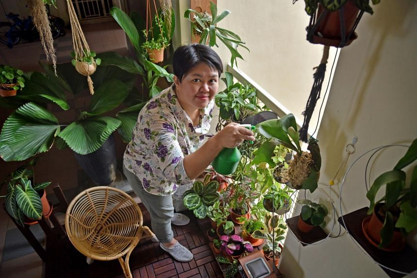 Ms Angela Chia with her plants at a garden outside her front door.