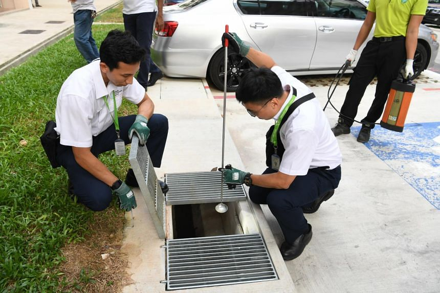 NEA officers checking for mosquito larvae in Woodlands.