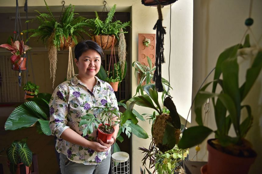 Design director and art instructor Angela Chia are mindful that their plants do not encroach on their neighbours' space.