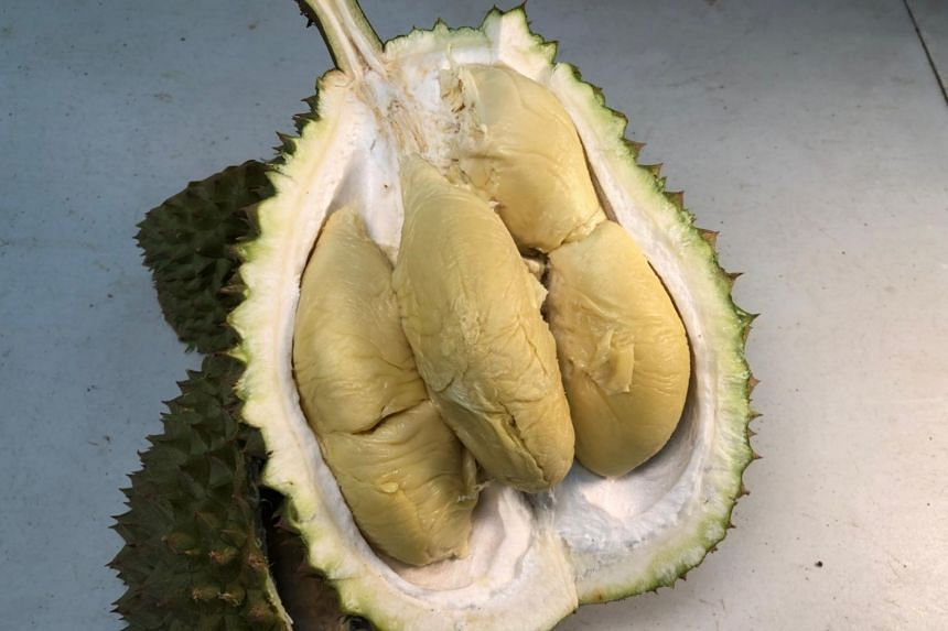 Known for its pronounced bitterness, the S17 durian is not a new cultivar but has risen in popularity among durian lovers in the last three years.