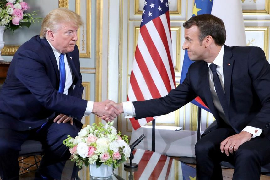 'Friendship' Sapling Gifted by Macron to Trump Dies