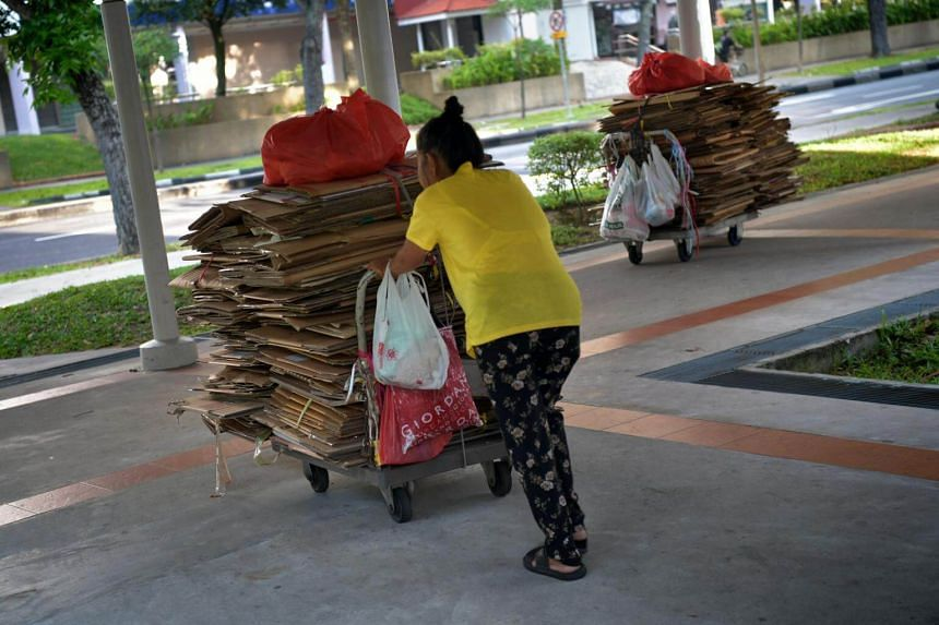 An elderly woman collecting cardboard boxes in Bedok.