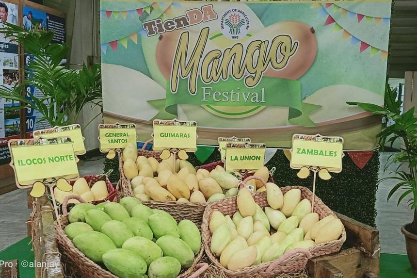 """To help farmers sell their harvest, the Department of Agriculture launched a """"Metro Mango"""" marketing programme, where stalls were set up around the capital to sell the fruit."""