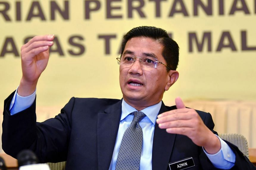 Mr Muhammad Haziq Abdul Aziz, who claims that he and Economic Affairs Minister Azmin Ali (above) are the men in the sex video, has been detained by police. A group aligned to Datuk Seri Anwar Ibrahim, who is supposed to take over as prime minister be