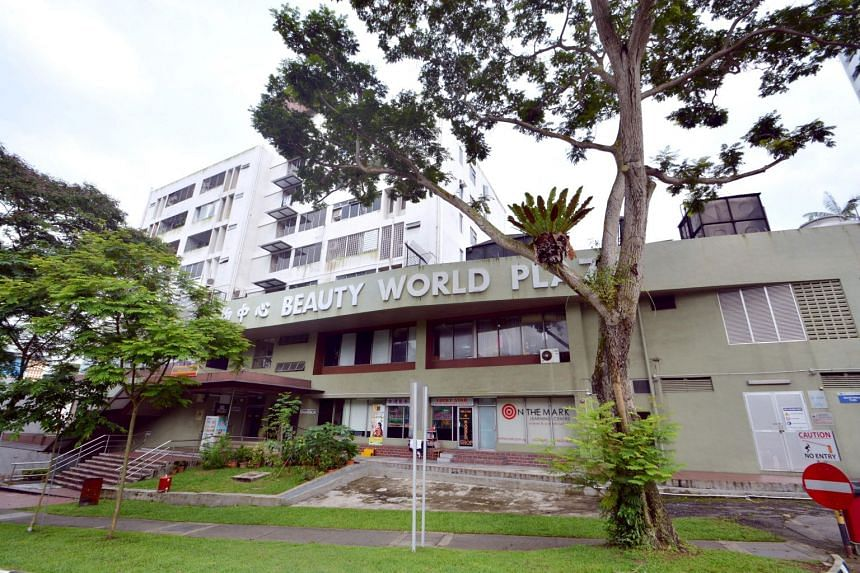 Beauty World Plaza, which is next to Beauty World MRT station, has a site area of 24,817 sq ft.