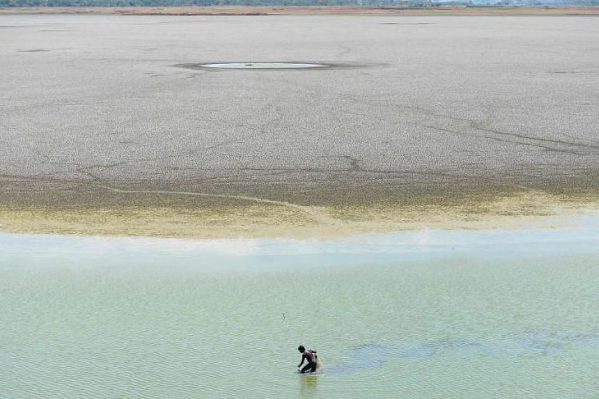 An Indian man searching for fish in a last bit of water in the dried out Puzhal reservoir on the outskirts of Chennai on June 14, 2019.