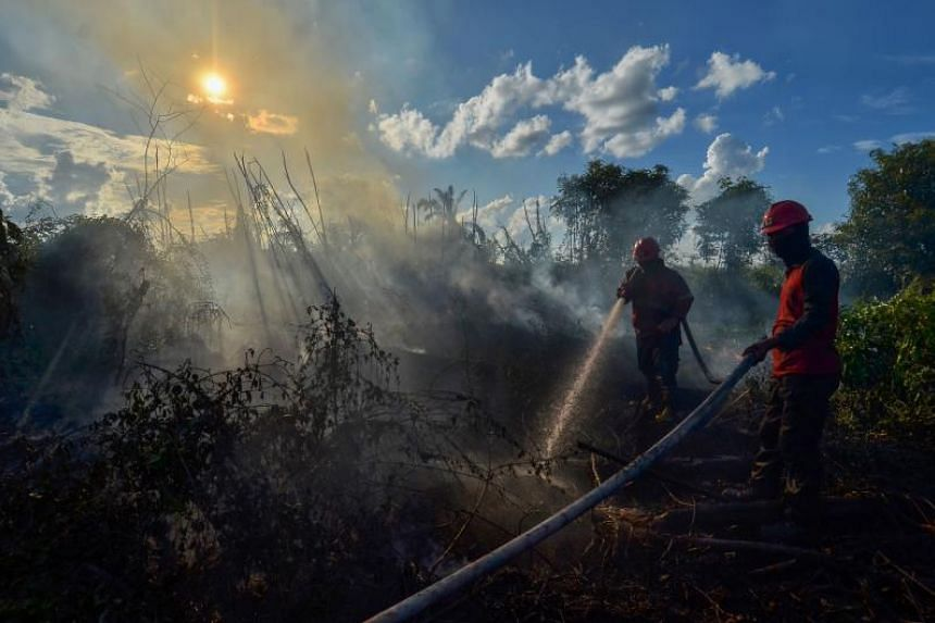 Firefighters extinguishing a peatland fire in Karya Indah village in Indonesia's Riau province on April 3, 2019.