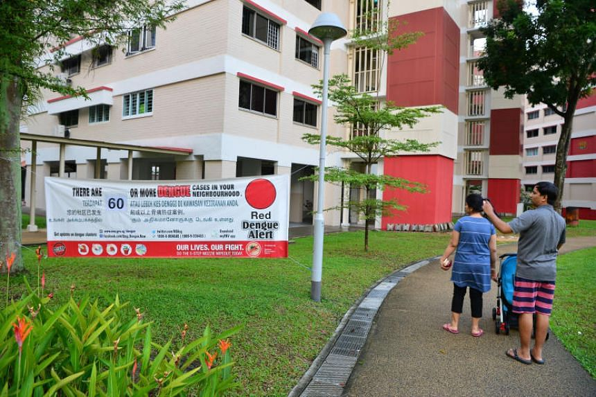 Singapore is in the midst of a dengue outbreak, with five reported deaths from the disease so far this year.