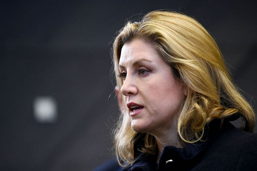 Defence Secretary Penny Mordaunt (above) spoke to reporters aboard a British warship in the Lithuanian port of Klaipeda.