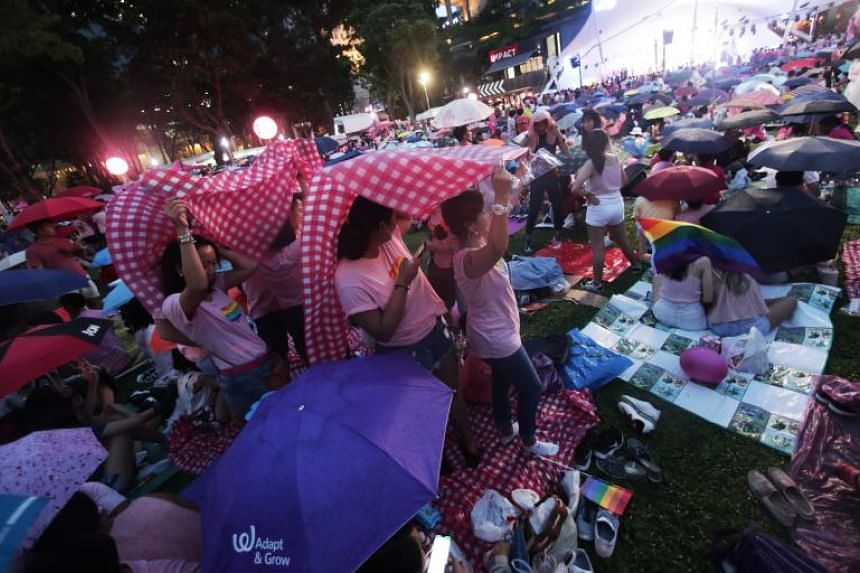 The focus of this year's Pink Dot SG event was on the law that criminalises sex between men.
