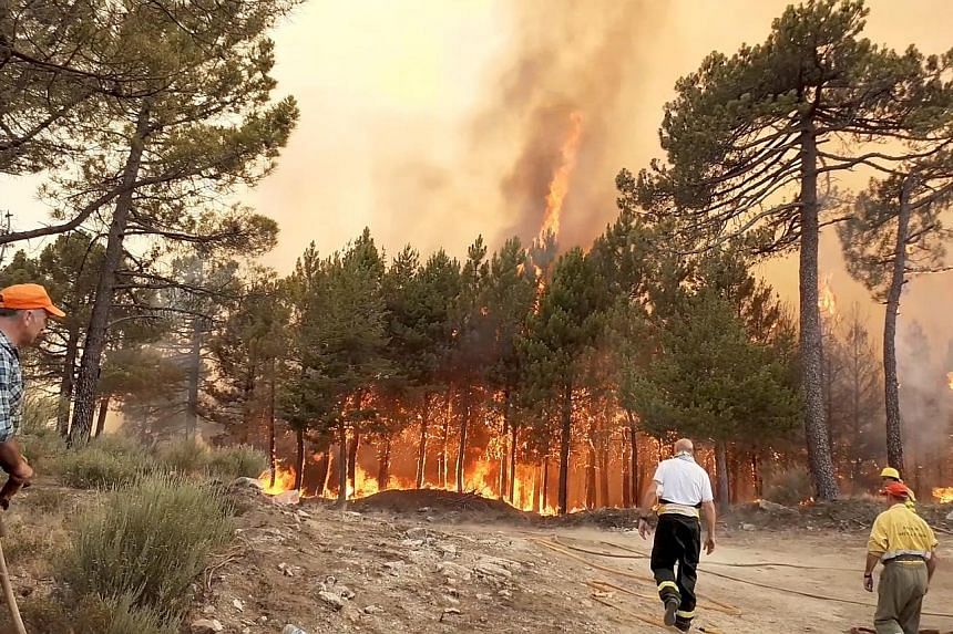 A wildfire in Alto de la Centenera, Spain, last week. More and more heat records are being broken all over the world as rising greenhouse gas emissions warm the planet, and 2019 is on track to be among the hottest years on record globally. PHOTO: REU