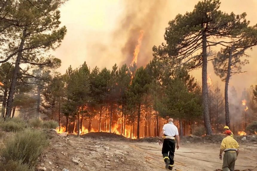Firefighters are seen near wildfires in Spain on June 29, 2019.