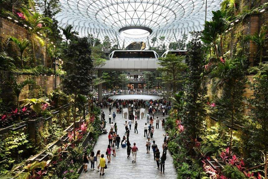 Designed by award-winning architecture firm Safdie Architects, the centrepiece of Jewel is a 40m indoor waterfall alongside a five-storey garden with more than 2,000 trees and 100,000 shrubs from all over the globe.