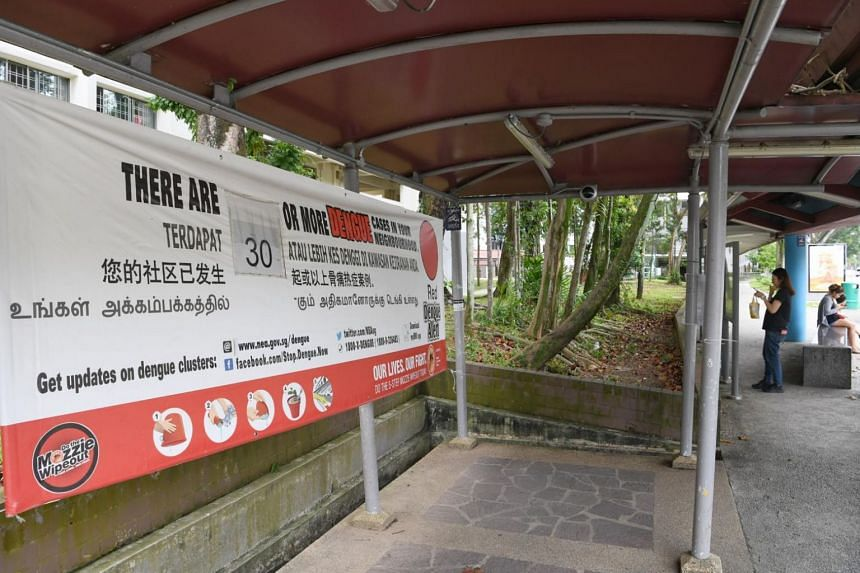 Although the overall dengue situation seems to be escalating, National Environment Agency's director-general of public health Chew Ming Fai said more than half of the 550 dengue clusters that emerged in the first half of the year have since been elim