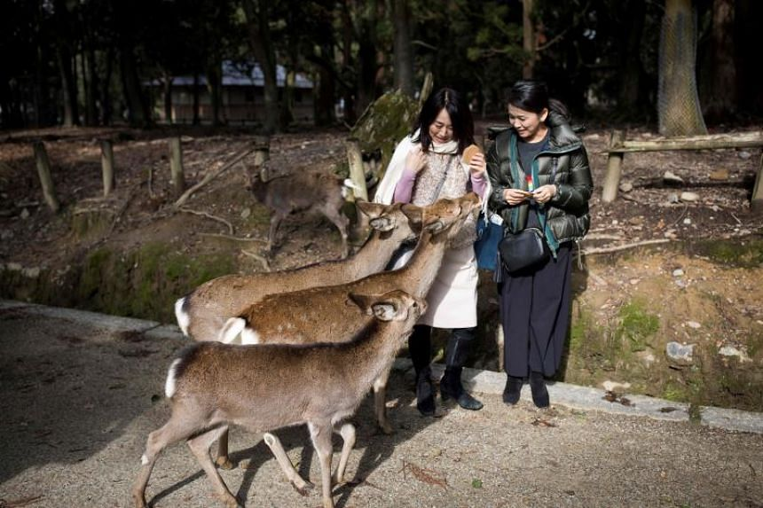 The deer at Japan's Nara Park - numbering on average about 1,200 - are protected as a national treasure.