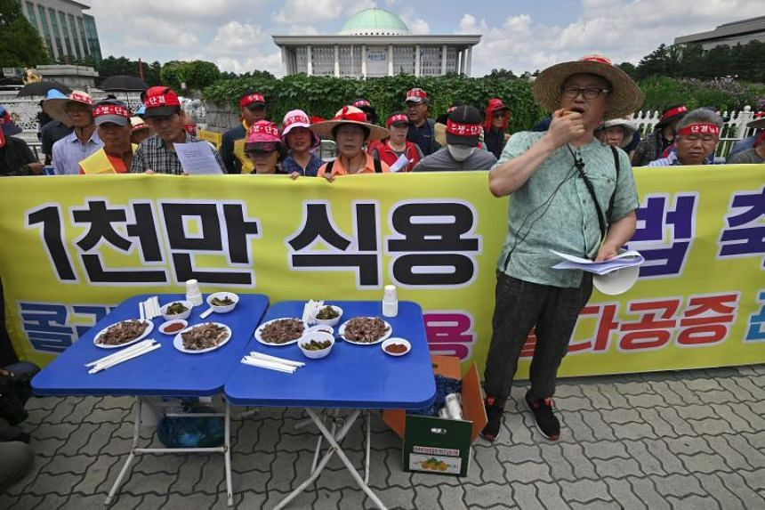 Rallies protest South Korea 'dog meat day'
