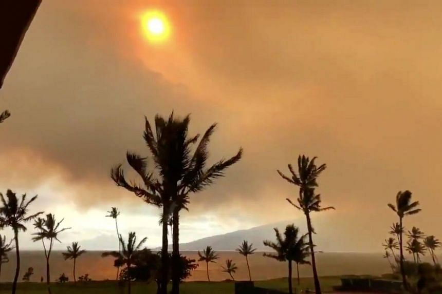 The fire on Maui has scorched more than 10,000 acres (4,000 hectares) of former sugar cane fields and brush.