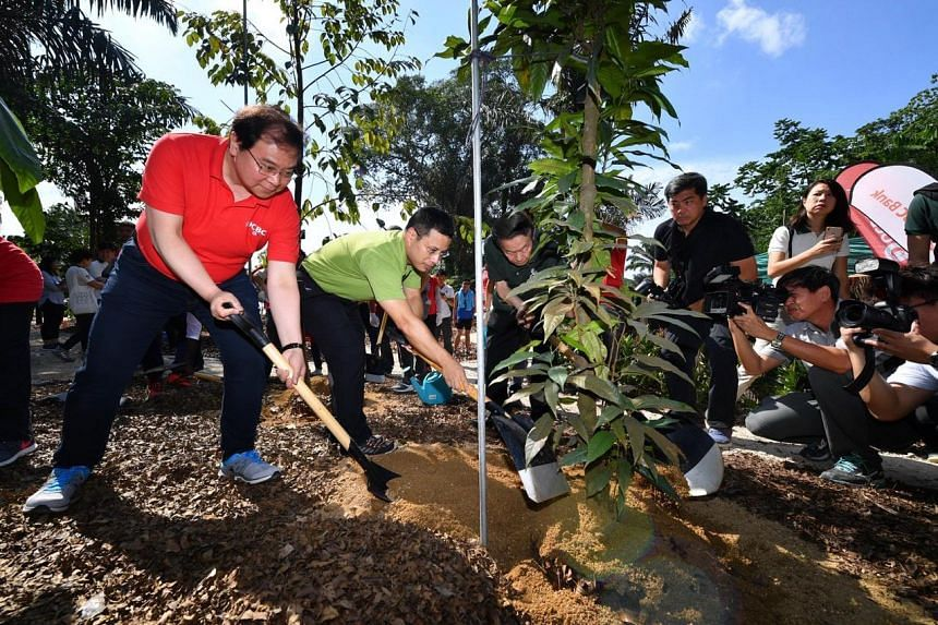 (From left) Mr Samuel N Tsien, Group CEO of OCBC; Mr Desmond Lee, Minister for Social and Family Development & Second Minister for National Development and Prof Leo Tan, Chairman of Garden City Fund, planting the Shorea gratissima (Meranti Laut).